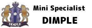 京都 ミニ専門店「DIMPLE」