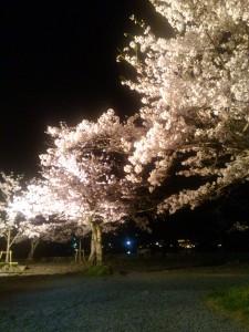 嵐山 渡月亭庭園